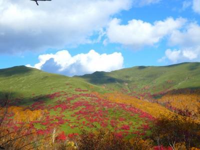 札幌~ニセコ紅葉二日目