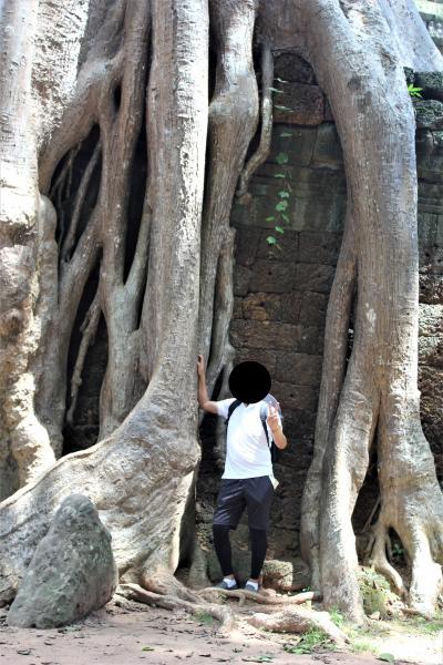 悠久の歴史~インドシナの遺跡・世界遺産を訪ねる旅 その⑪ 6日目その4:神秘的空間タ・プロームへ、自然が文明を征服する凄まじさ!