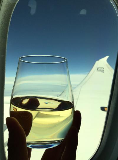 111. スイス出張 Part 1。ANAビジネスクラス乗り比べ。往路はB787-9。