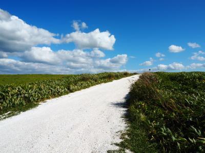 道北◆運転苦手な女一人旅③ 「白い道」宗谷丘陵 編