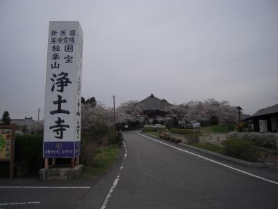 今年廻った寺社