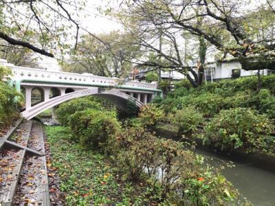 吹上まち歩きとコスモス畑2017②~駅からハイキングで元荒川橋めぐり~