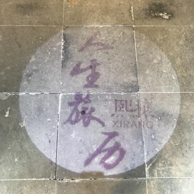 フォトジェニックな上海、無錫と、よし!みなさんに近づける写真を撮るぞ!希望と期待が食当たりによってこんな感じになった上海、無錫