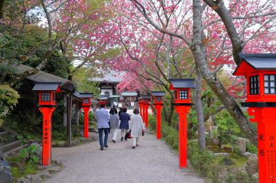 古い町並み巡り(坂本)