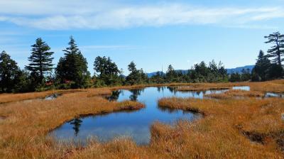 尾瀬のランドマーク「燧ヶ岳」の秋を楽しむ