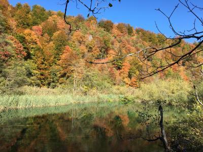 ベオグラードから入るクロアチア・スロベニア周辺5カ国周遊旅行 クロアチア、プリトヴィツェ湖郡国立公園上湖群編