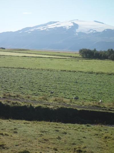 アイスランドでのボランティア夏季セミナー