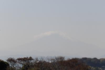 鎌倉広町緑地-御所谷入口から富士見坂まで