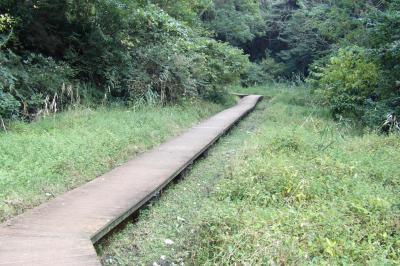 鎌倉広町緑地ーきはちの窪から鎌倉山2出口へ