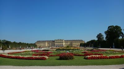 ウィーン2日目 シェーンブルン宮殿~オーバーラーでランチ~ 美術史博物館