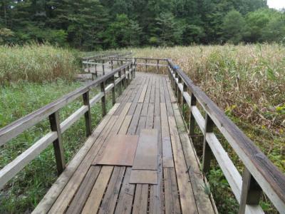 北本自然観察公園の散策と埼玉県自然学習センターの見学