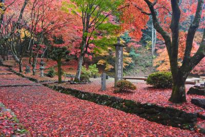 鶏足寺に行ってきました