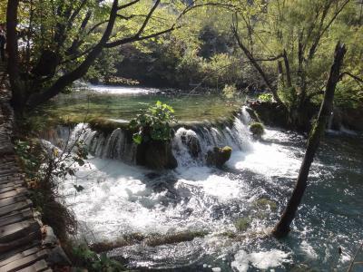 碧く輝くクロアチア・プリトヴィッツェ湖群国立公園(4)