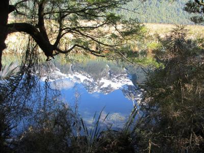 レンタカーで巡るニュージーランド南島・トレッキング満喫の12日間②