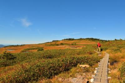 【登山】苗場山 山頂に広がる大湿原と紅葉の楽園風景
