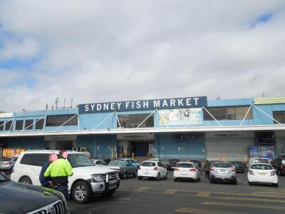 シドニー&ゴールドコースト旅行 2017 <11> SYDNEY FISH MARKET見学&Rydges Sydney Airport Hotel編