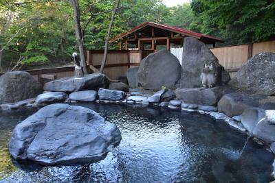 十勝の芽登温泉 ~シマフクロウが遊びに来る秘湯の宿~(北海道足寄)