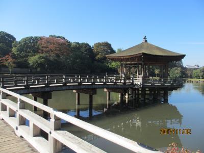 正倉院展からの奈良公園ひとめぐり