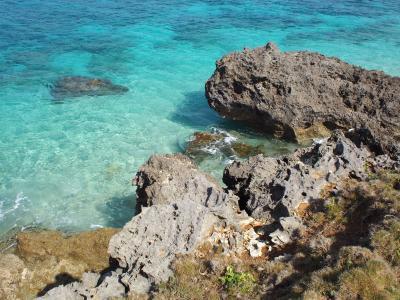 LCC利用 1歳児と冬の沖縄旅行