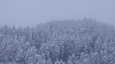 青森 『雪』