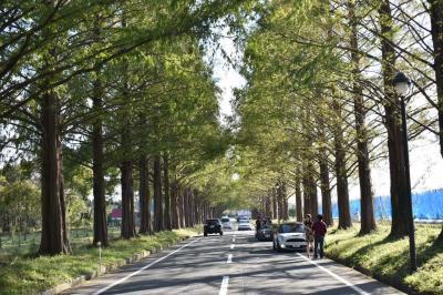 滋賀県湖西ぶらっとドライブ