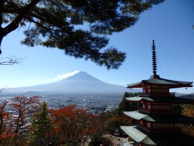 「富士山が観たい!」九州の母娘の二人旅 (JALファーストクラスの体験付き)