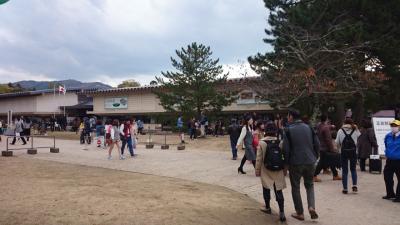 秋の奈良~正倉院展、その後社会人野球観戦