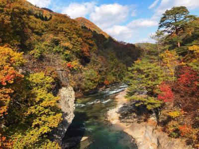 【日帰りバスツアー】吹割の滝と伊香保温泉に松茸ご飯・りんご狩りも付いて7480円の旅(☆´3`)+AGOいさむさん