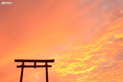 熱気球のまち佐賀へ♪(1) 海に浮かんでなかった海中鳥居…(涙)【太良町・大魚神社】