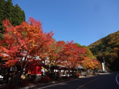 ☆紅葉の日光へ 10月☆ 台風をすり抜けて♡ No3 奥日光 吹き割りの滝 川場・道の駅