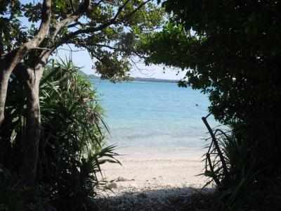 車なしで行く奄美大島、女子ひとり旅。3日目は奄美のビーチ巡り