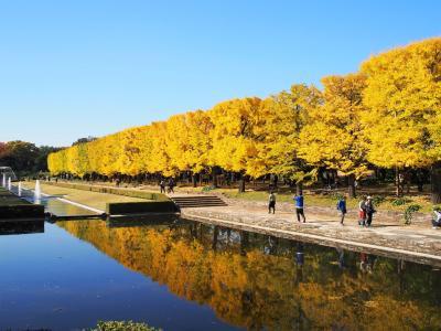 モノレールに乗って 昭和記念公園に 紅葉を見に行こう!