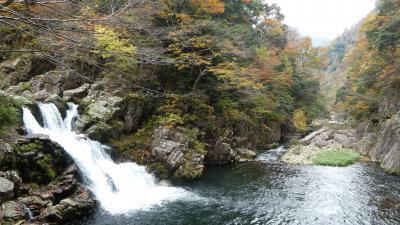 のんびりバス旅/三段峡で紅葉&絶景ハイキングとヴラマンク展鑑賞2泊3日