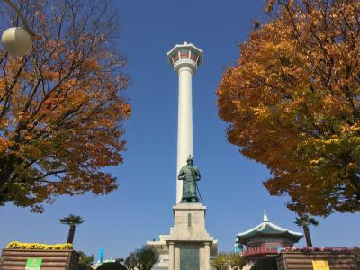秋の釜山は紅葉がキレイ