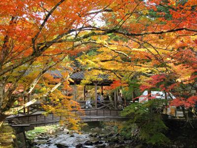 秋の佛通寺 「4トラ映え」は如何程か・・・