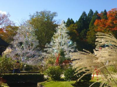 箱根・・ガラスの森美術館とポーラ美術館で秋のスイーツを食べる♪