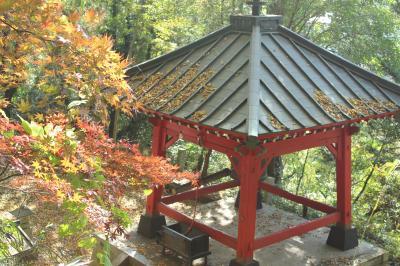 出流原弁天池、那須烏山の龍門の滝、八方ケ原の紅葉の旅