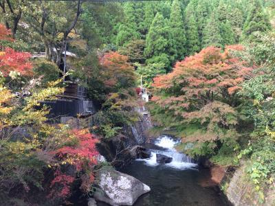 秋の阿蘇ドライブと黒川温泉。