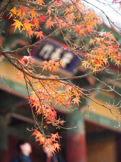 韓国/古都慶州で紅葉狩り@ヒルトン慶州&アーバンホテル(2017年11月)