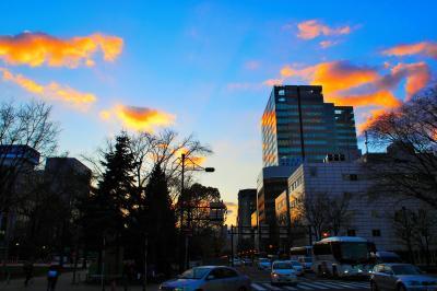 札幌・小樽ひとり旅行2017年初冬(2)~札幌は円山公園をゆらゆら&ピカンティのスープカレー