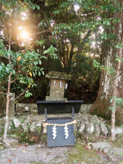 熊野古道-7 高野山分岐⇒祓殿王子社跡へ  ☆石段//石畳*木の根道がつづき