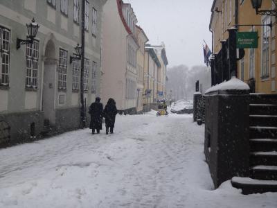 はじめてのバルト三国2017-<9>リーガ2日目前半・雪降るリーガは悲しいキモチで