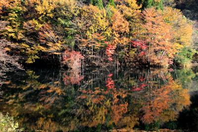 ◆山紫水明・錦織り成す美しき福島の秋 Part1