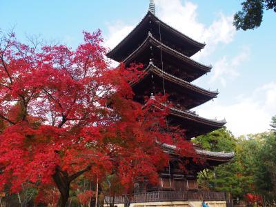 秋の京都散策 Day 2~常寂光寺・二尊院・宝筐院・北野天満宮・仁和寺・祇園~