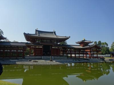 JALマイルで行く旦那と京都旅行☆1日目☆平等院鳳凰堂~伏見神社~八坂神社~祇園