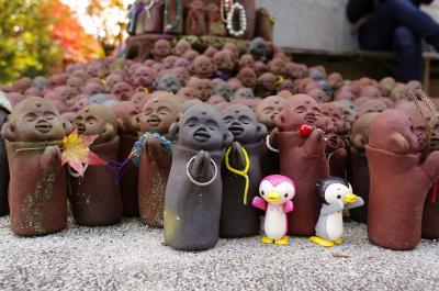 写真部秋合宿 紅葉の宮島で撮る・登る