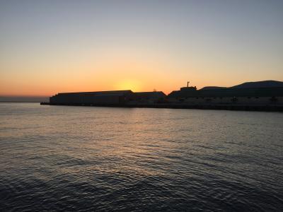 横浜経由 紅葉の北海道! 9  夜明けの小樽港とneko司令のミッション!