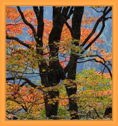 Solitary Journey [1834] 赤黄に染まった里山風景♪秋色に彩られた西中国山地を走る。<MRC・中道・スパ羅漢・重なり岩>広島県廿日市市