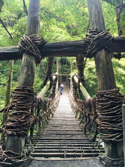 恋も芽生える?つり橋効果抜群のかずら橋と秘境の妖怪村