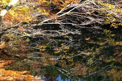 ◆山紫水明・錦織り成す美しき福島の秋 Part2